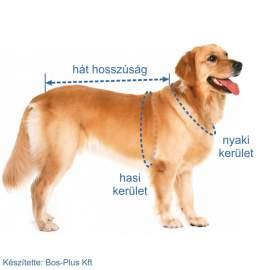 VANCOUVER sportos kutyakabát
