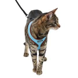 Sport macska hám pórázzal