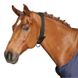 Nyakörv lovaknak