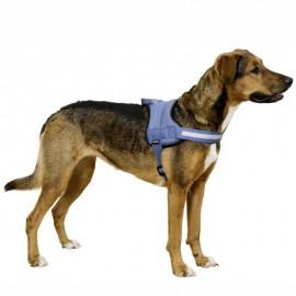 MAESTRO 2 fényvisszaverős kutyahám